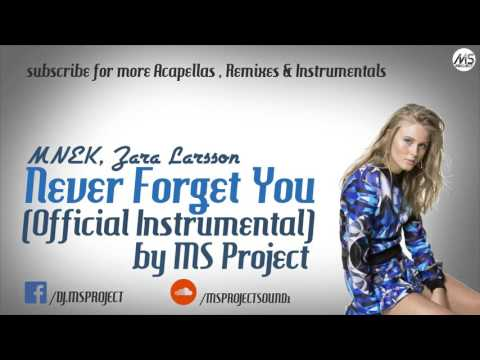 MNEK, Zara Larsson - Never Forget You (Official Instrumental) + DL