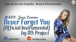 MNEK, Zara Larsson - Never Forget You (Official Instrumental) + DL