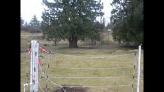 Installing Electric Fencing 2