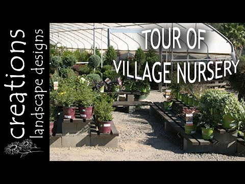 Tour Of Village Nursery In Huntington Beach CAlifornia