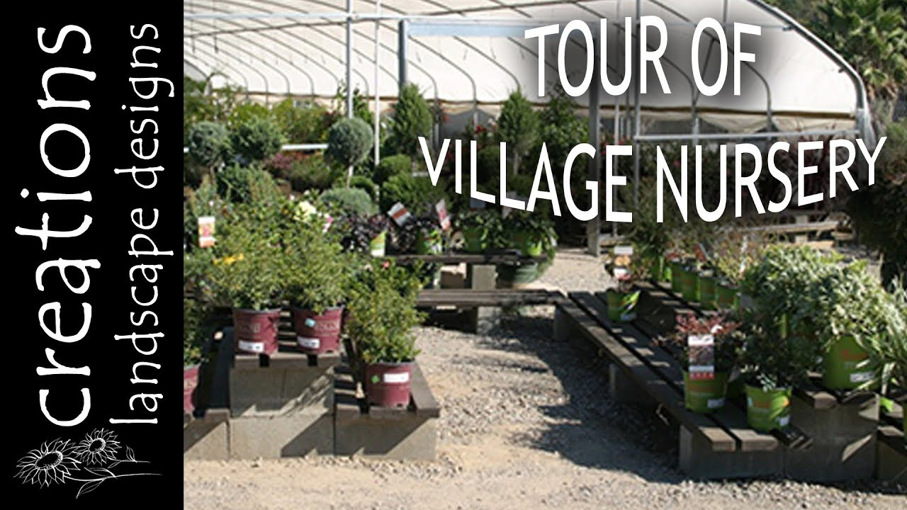 Tour Of Village Nursery In Huntington Beach California