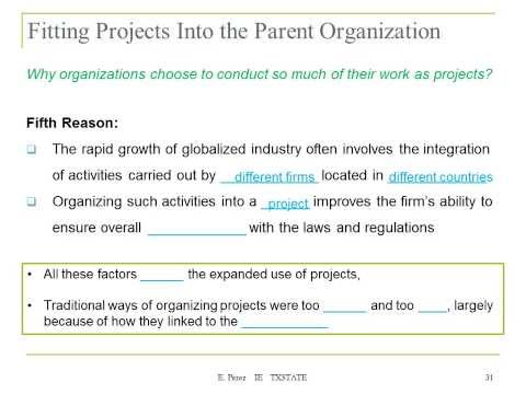 Lecture 2a The Project Organization
