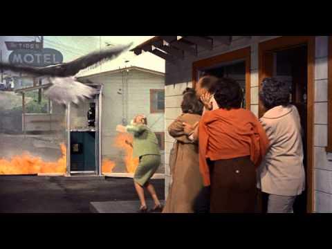 Кадры из фильма Птица