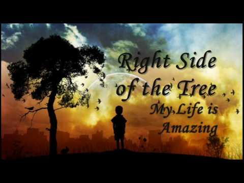 Right Side of the Tree - My Life is Amazing