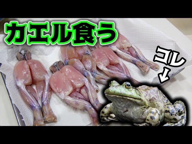 【珍味】カエルの肉を唐揚げにして食べてみた!