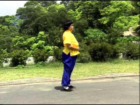 VCD martial arts Shaolin series of Dharma Yi Jin Jing 01