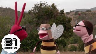 31 minutos - Nota Verde - Las abejas