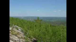 Скачать Григорий Лепс горное эхо В Высоцкий
