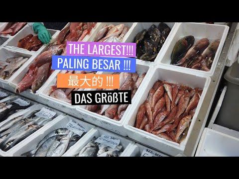 BBC Documentation |  Largest FISH Market In London | Billingsgate Fish Market