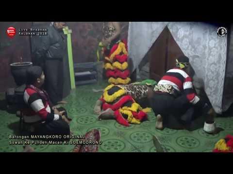 Ritual Angker Barongan MAYANGKORO ORIGINAL Sowan Ke Punden Macan Ki SOEMODRONO Nyadran KALORAN 2018