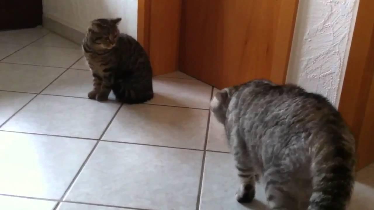 Erstes Treffen