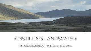 Distilling Landscape with the Roca Brothers