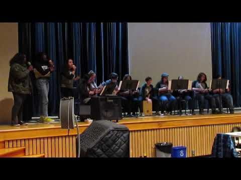Minisink Valley High School Ukulele Club performs for Board of Education