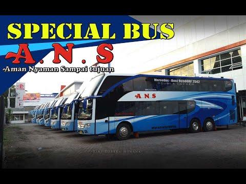 Special Kumpulan Bus ANS Yg Lama Dan Yg Terbaru