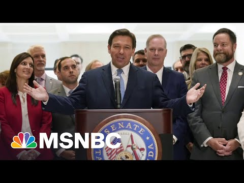 Republican 'Power Grab': Florida Rep On His State's New Voter Restriction Law | All In | MSNBC