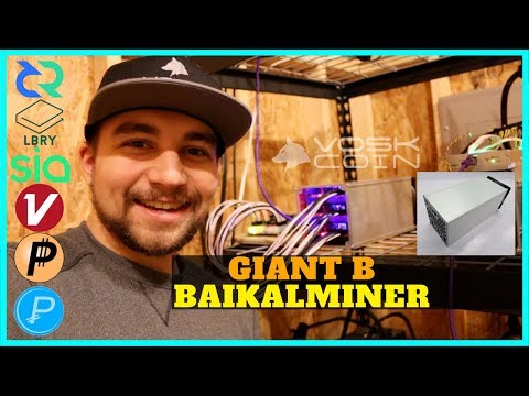 Baikalminer Giant B - Unboxing, Overview, and Profitability Mining DCR - LBRY - SC - XVC - PASC