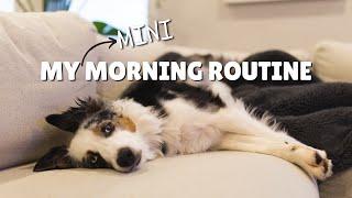 My Mini Aussie's Morning Routine