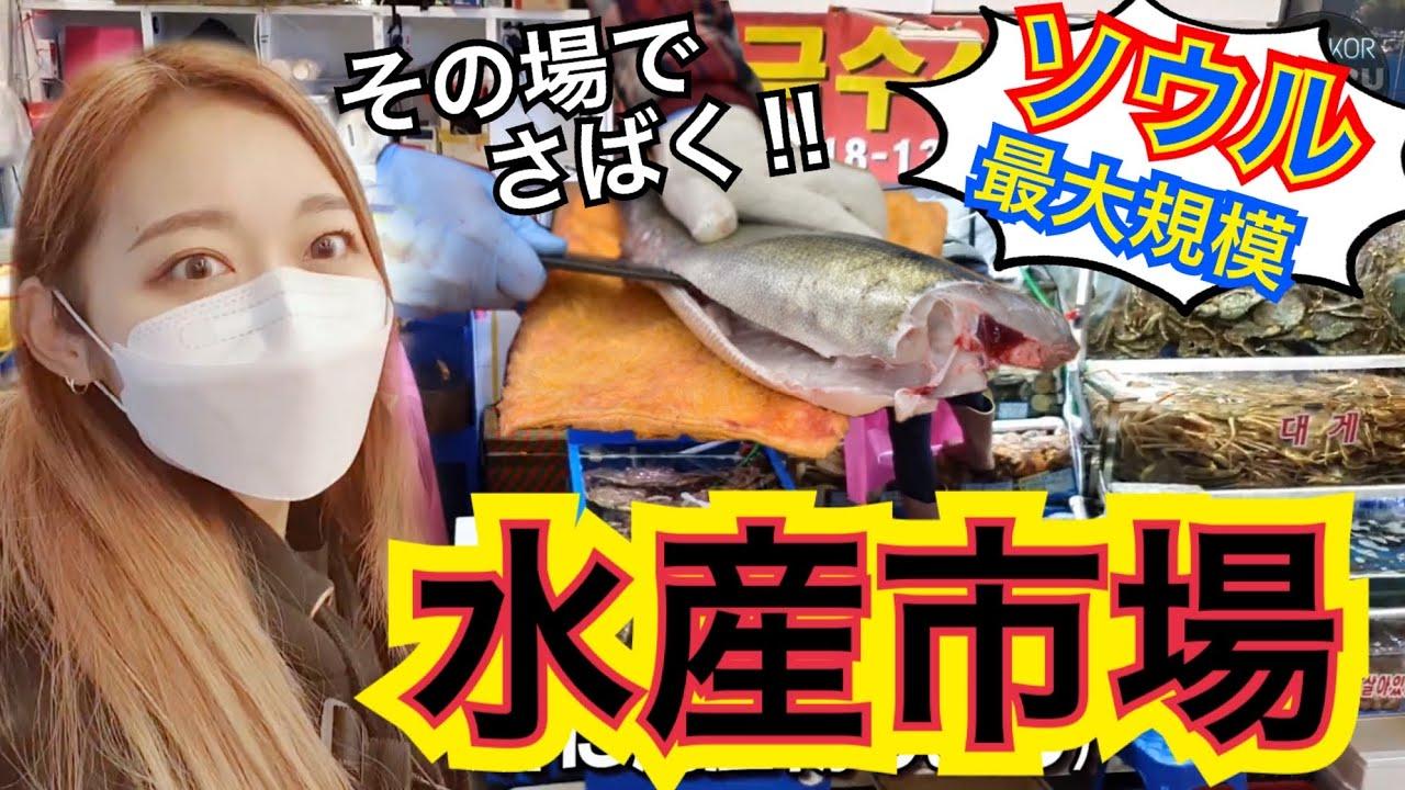 【久しぶり市場】初めての水産市場(魚市場)!生きた魚を目の前でさばいて、その場で食べる!【モッパン】