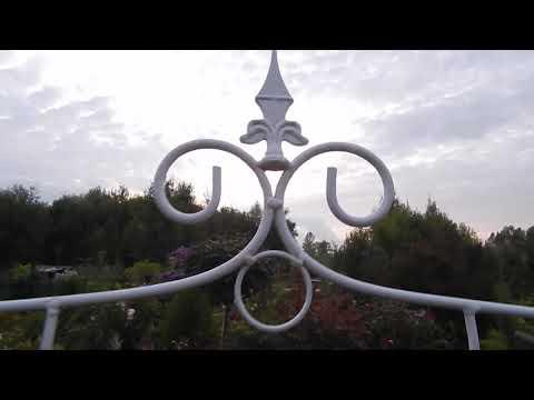 Шпалеры для роз-украшение сада