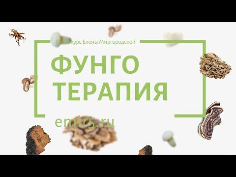 Фунготерапия | Видеокурс Елены Миргородской