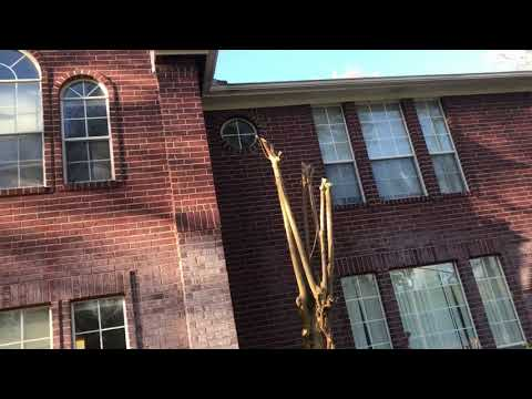 MEAN Bees in Soffit - Removal 102