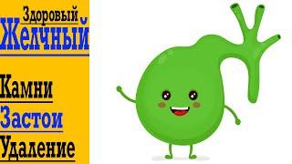 Твой ЗДОРОВЫЙ Желчный Пузырь - Камни и профилактика, Удаление, Застои Желчи, Перегибы, Жжение