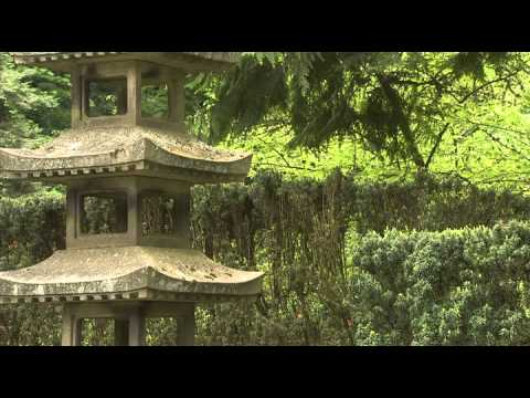 Видео видео о саде камней японии попочки