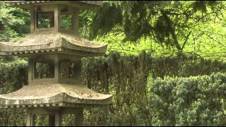 Сад камней япония релакс медитация relax  film