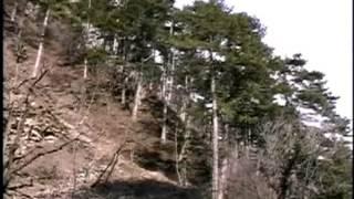 видео путешествие по крыму
