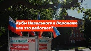 Кубы Навального в Воронеже: как это работает