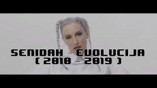SENIDAH - EVOLUCIJA (2010 - 2019)