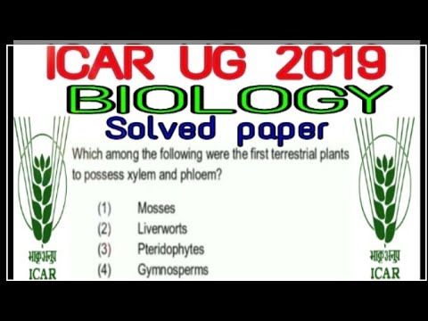 Repeat Bihar Board Inter Arts Geography Model Paper 2019 by
