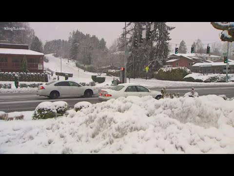 The day after snow slams Seattle and western Washington