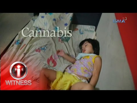 I-Witness: 'Cannabis,' dokumentaryo ni Jay Taruc (full episode)