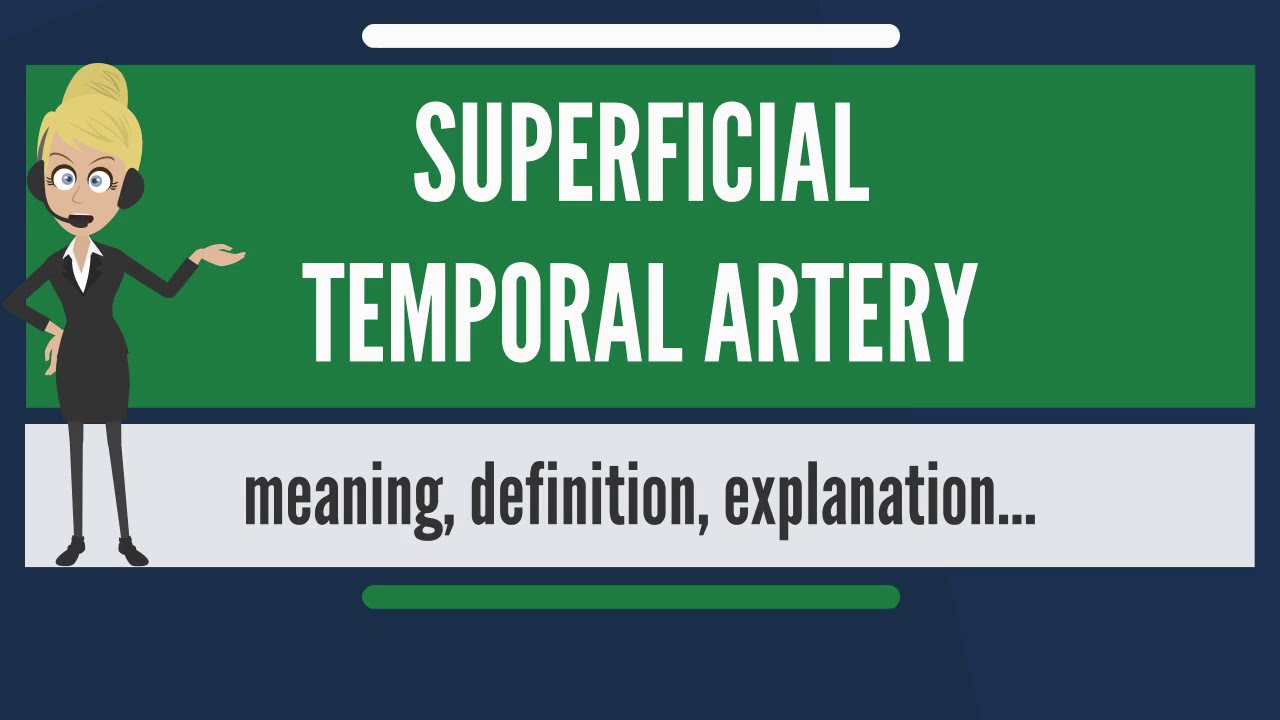 What is SUPERFICIAL TEMPORAL ARTERY? What does SUPERFICIAL TEMPORAL ...
