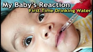 Baby Drinking Water First Time   5 Month Baby Tasting Water   How to feed Water to Baby 1st time?