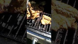 Azando. Carnita de res(3) thumbnail