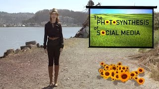 Photosynthesis Of Social Media | Ep. 4 | The Future Starts Here