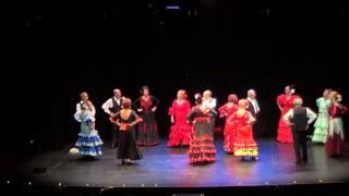 GALA DE NAVIDAD 2014 SAN FERNANDO DE HENARES