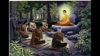 Lời Vàng Phật Dạy - Rất hay & ý nghĩa