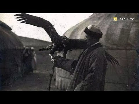Hunting With Golden Eagle