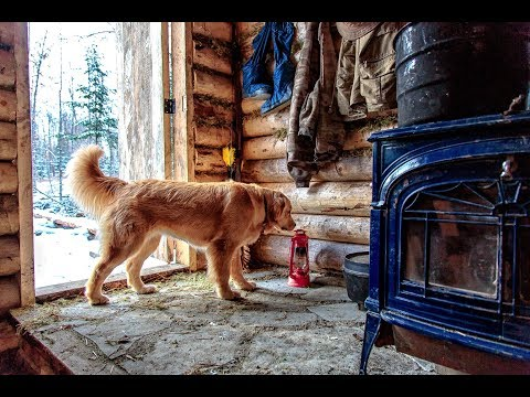 Building a Log Cabin in the Forest with Help From My Dog - Roof, Stone Floor and Woodstove