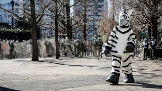 Tokyo Zoo Simulates Animal Escapes ... With Costumed Humans - Newsy