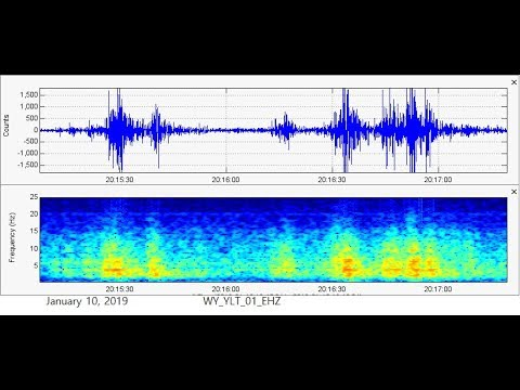 Yellowstone Feels Vibrations from Fast Traveling Object -- Strange Event and Recent Swarm Analyzed