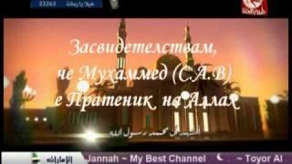 Ezan Muhammed B. اذان محمد بشار vqra iman Езан.طيور الجنة