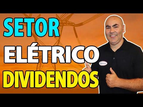 2 EMPRESAS DO SETOR ELÉTRICO VÃO PAGAR DIVIDENDOS | Petinvest