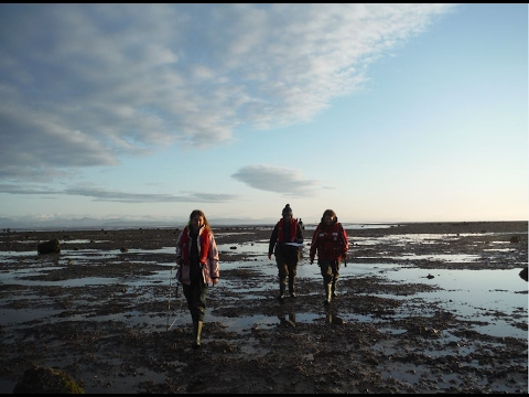 Marine and Coastal Heritage Programme 2014-2017 Traineeships and why they work
