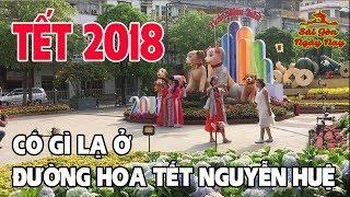 Đường Hoa Tết Nguyễn Huệ 2018