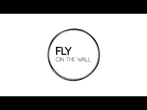 FLY ON THE WALL - THE JOB (Behind the Scenes Teaser)