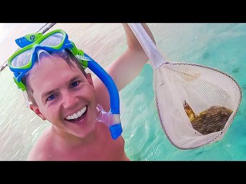 CAUGHT FLORIDA SEA CREATURE!